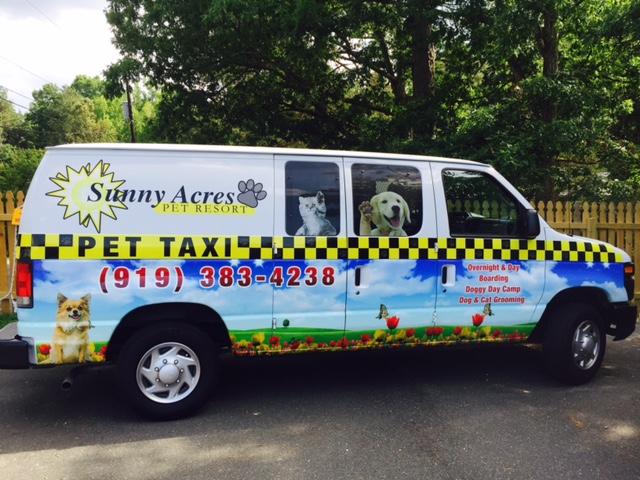Pet_Taxi